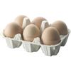 05 Яйцо